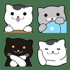 灰白貓愛互動
