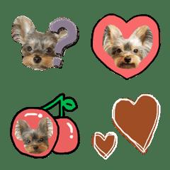 pino_emoji