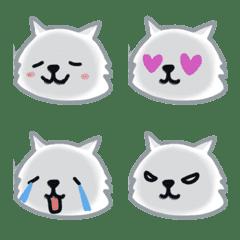 Himarayan Cat