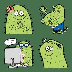 Hello cactus!