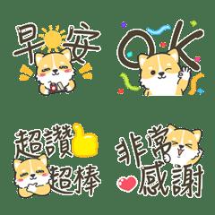 Shiba Inu 柴犬奴醬 2 -日常...