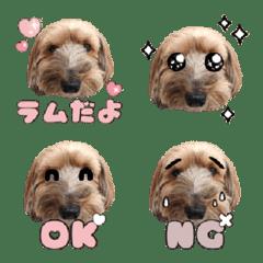 Mix Ram Emoji