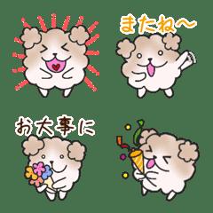 Mofu mofu dog