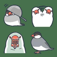 Cute Java sparrow emoji