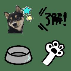 Shibainu Gin Emoji - part1