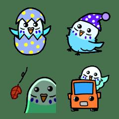 表情4的鸚鵡