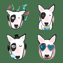 Cheap and Cute Bull Terrier - Part 2