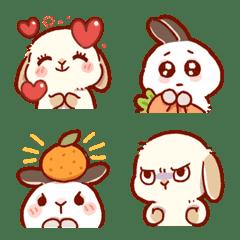 Long-Tan & Short-Tan bunny 3
