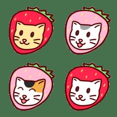 Strawberry Cats
