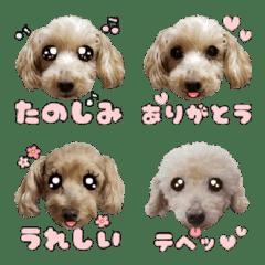Natsuki & Lucky & Happy Emoji