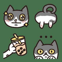 科科是隻貓3