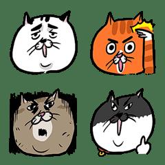 貓室友和貓鄰居們