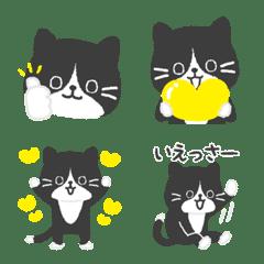 Black cat emoji !
