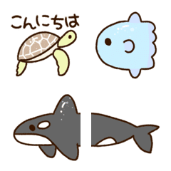 Cute creatures of the sea