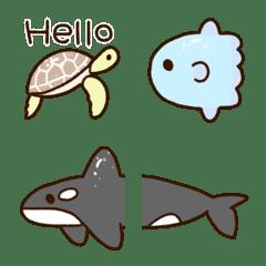 可愛的海洋生物
