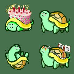 Undercover turtle