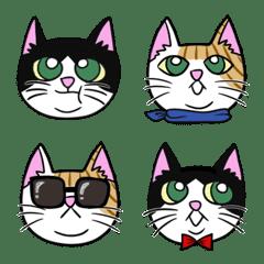 tokie's cat