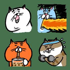 貓室友動態表情貼