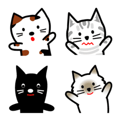 Lots of cute cats