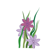 อิโมจิไลน์ ระบบป่าไม้ - ดอกไม้หญ้าต้นไม้