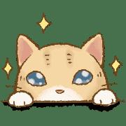 อิโมจิไลน์ Cat's Lifestyle Love Emoji